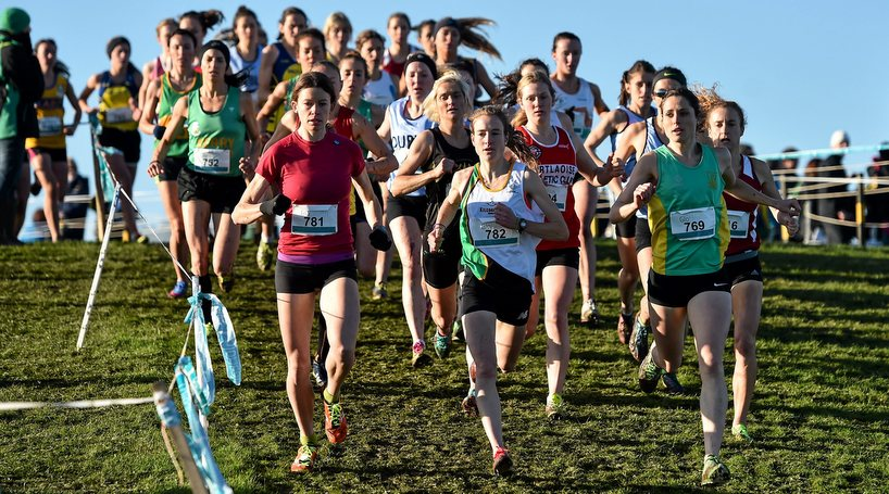 Cross Country. Picture credit: Ramsey Cardy / SPORTSFILE