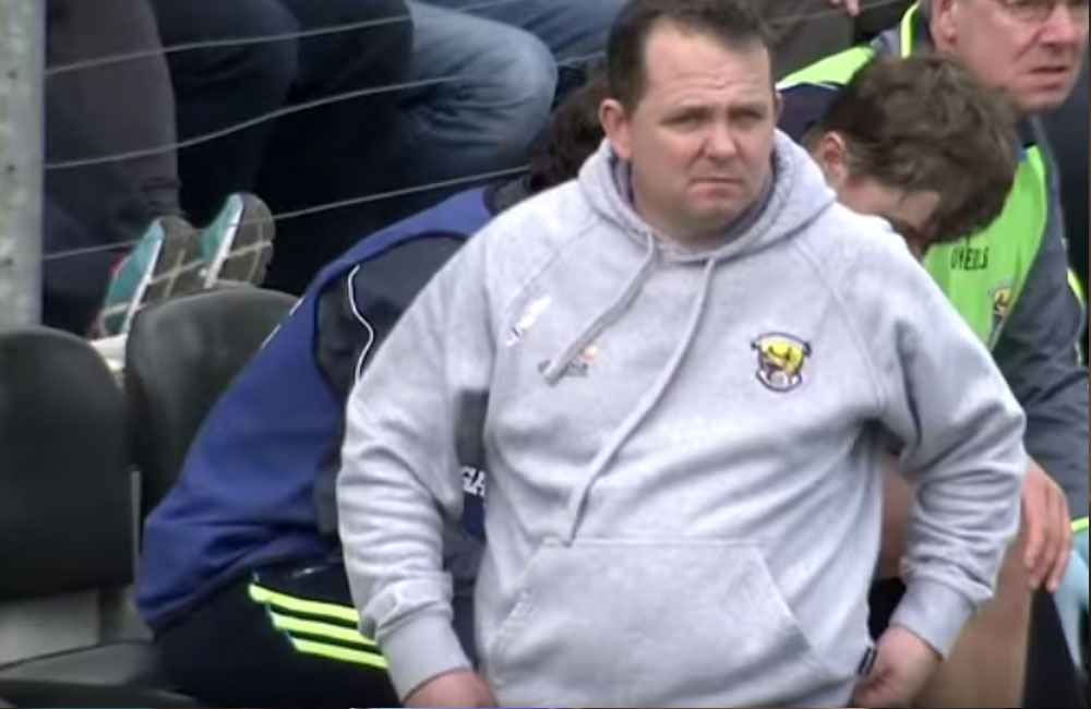 Wexford senior hurling manager Davy Fitzgerald. Source: YouTube