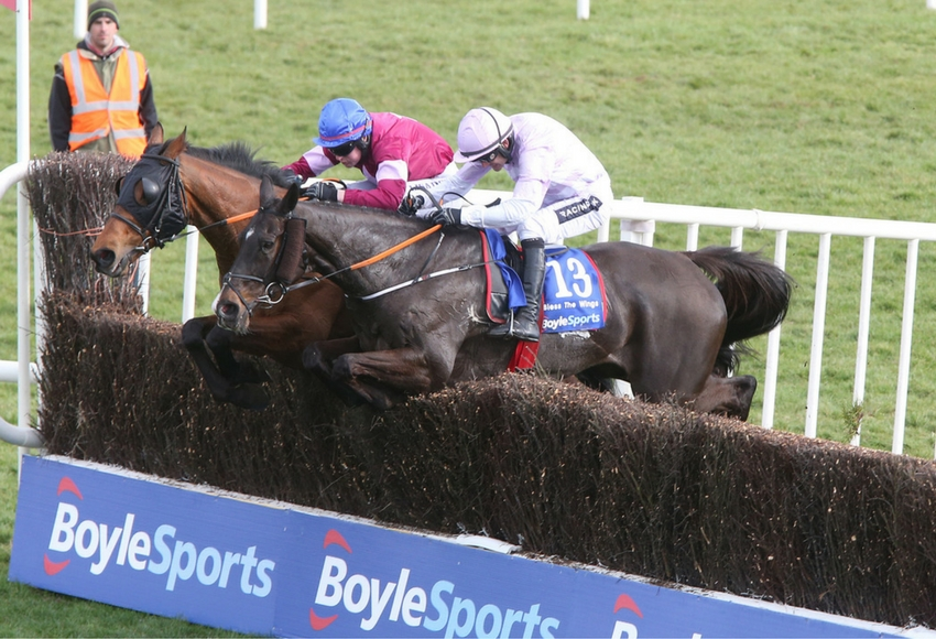 Rogue Angel at the BoyleSports Irish Grand National at Fairyhouse. Photo: Fairyhouse.ie