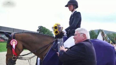 Susan Fitzpatrick and Fellow Castlefield. Photo: HorseSportIreland.ie