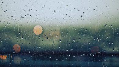 Rain. Photo: Gabrile Diwald/Unsplash