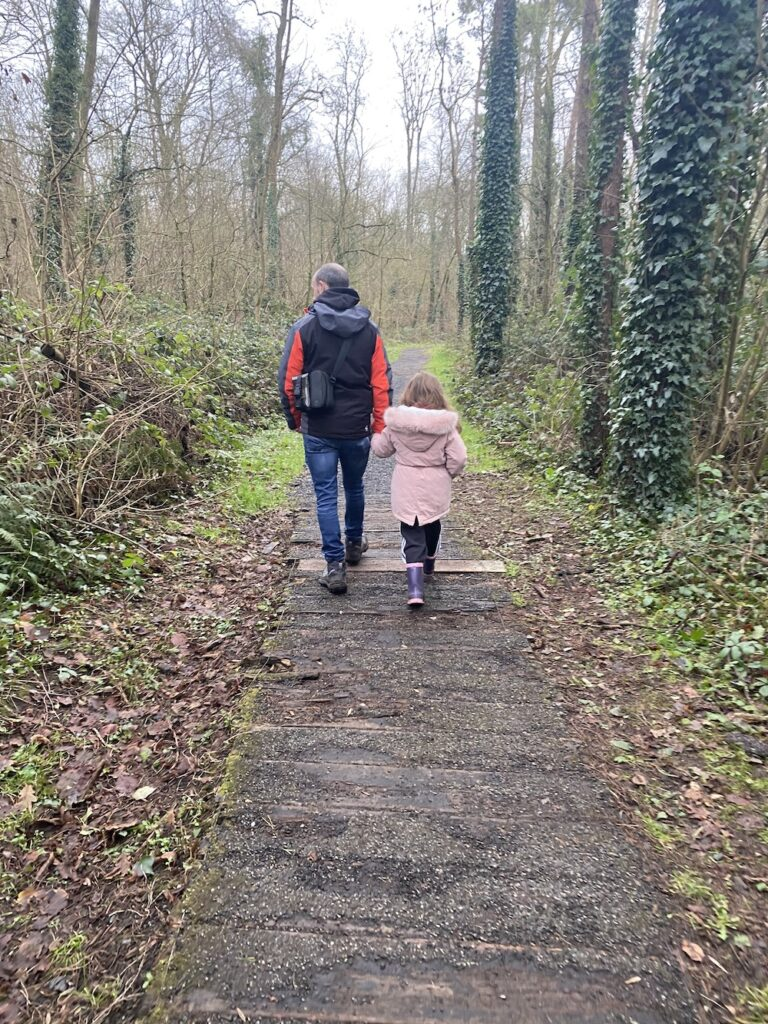Oak Park Forest Walk, Carlow. (Eimear Ní Bhraonáin)