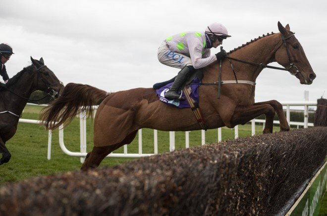 Paddy power gold cup 2021 betting line plo pre flop betting