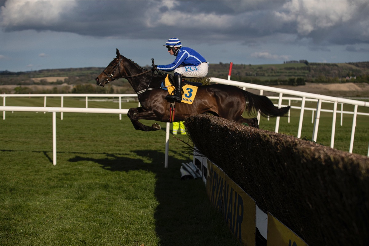 Electric Energumene delivers for champion-elect Townend and majestic Mullins at Punchestown